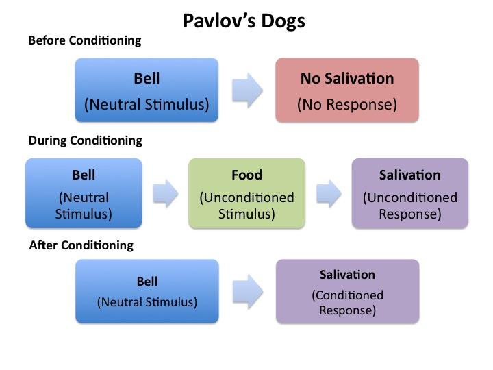 an overview of classical conditioning A summary of classical conditioning in 's learning and conditioning learn exactly what happened in this chapter, scene, or section of learning and conditioning and what it means.